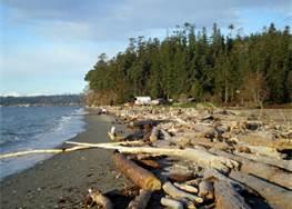 Camp Indianola Beach